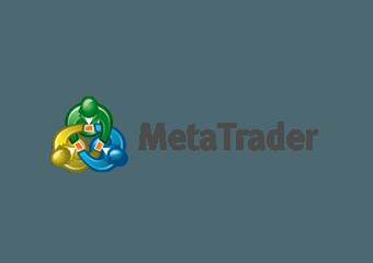 Forex VPS MetaTrader Platform